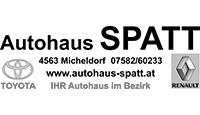 spatt_sw